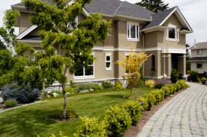 We offer professional landscaping services